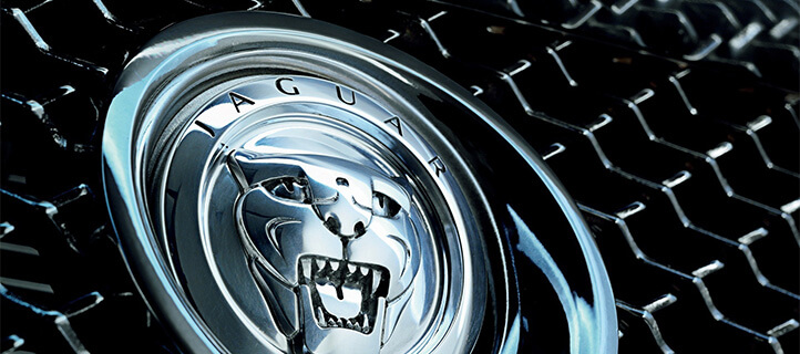 How to come up with the right name - Jaguar